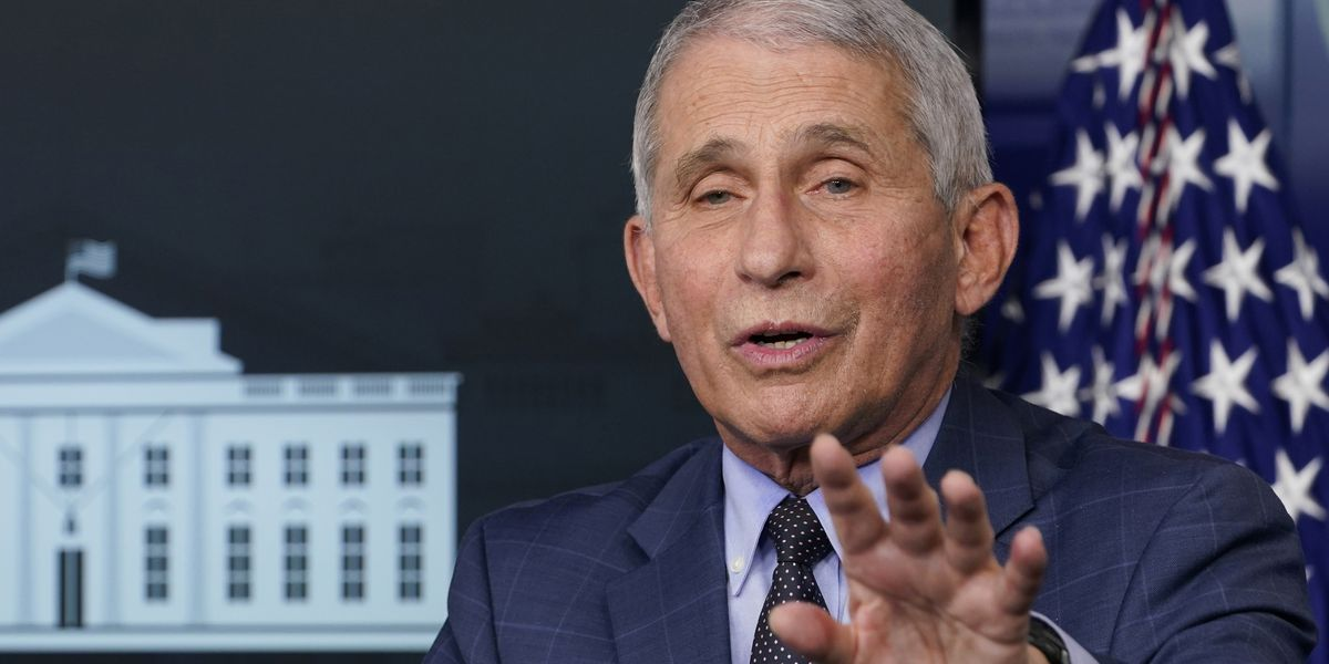 Fauci: US may see 'surge upon a surge' of virus in weeks ahead