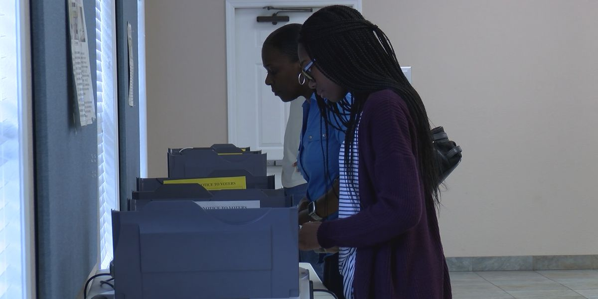 Early voters head to the polls in Bryan County