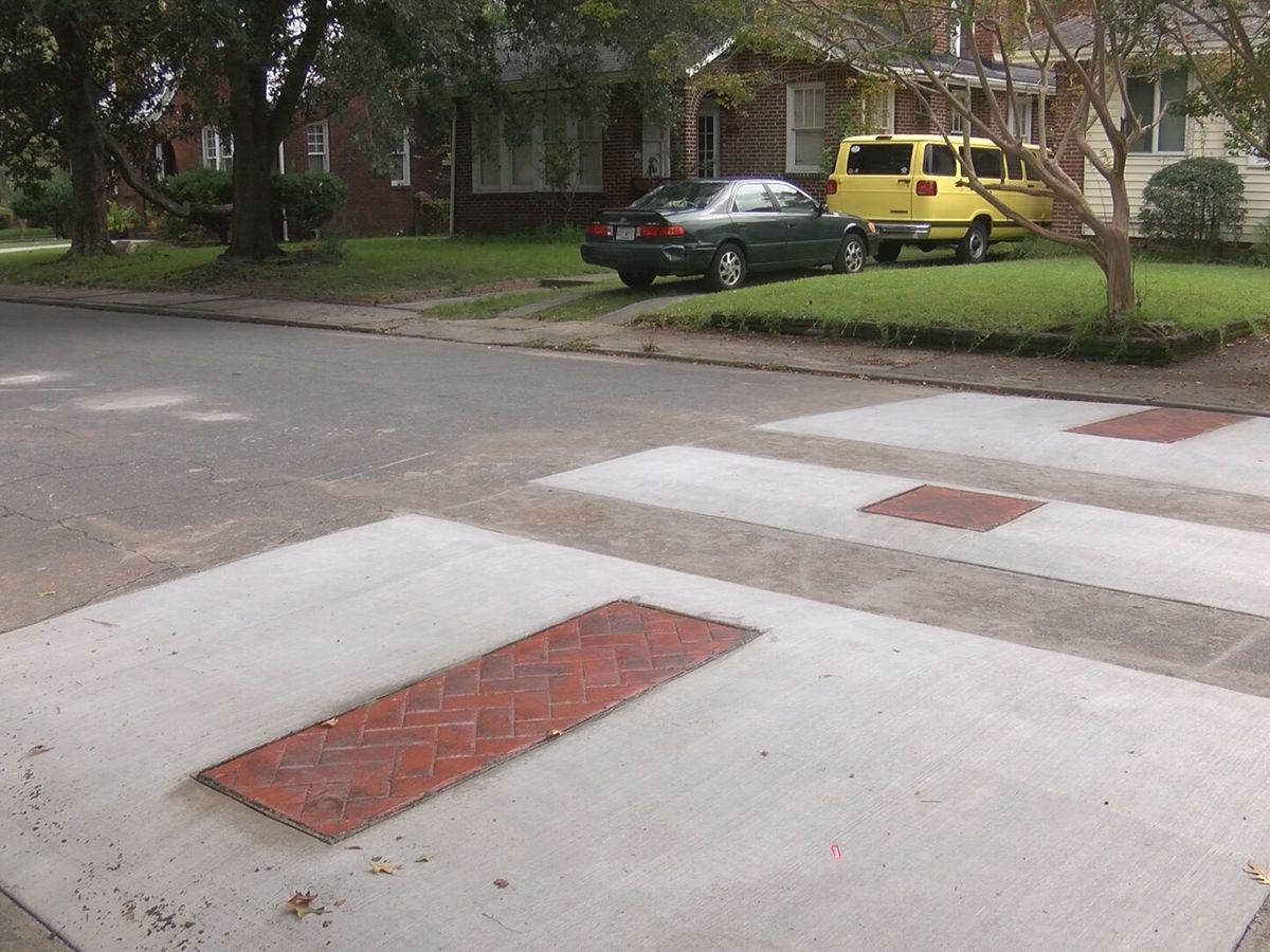 Traffic calming device in Savannah neighborhood does little to deter speeding