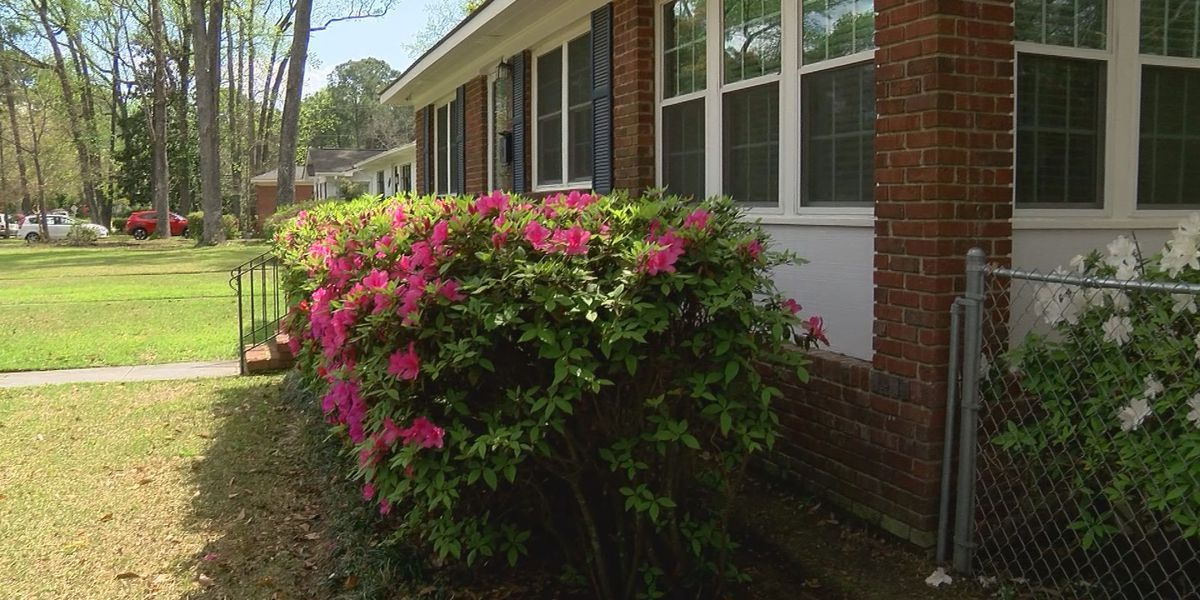 Home buyers face fierce competition in Savannah's seller's market