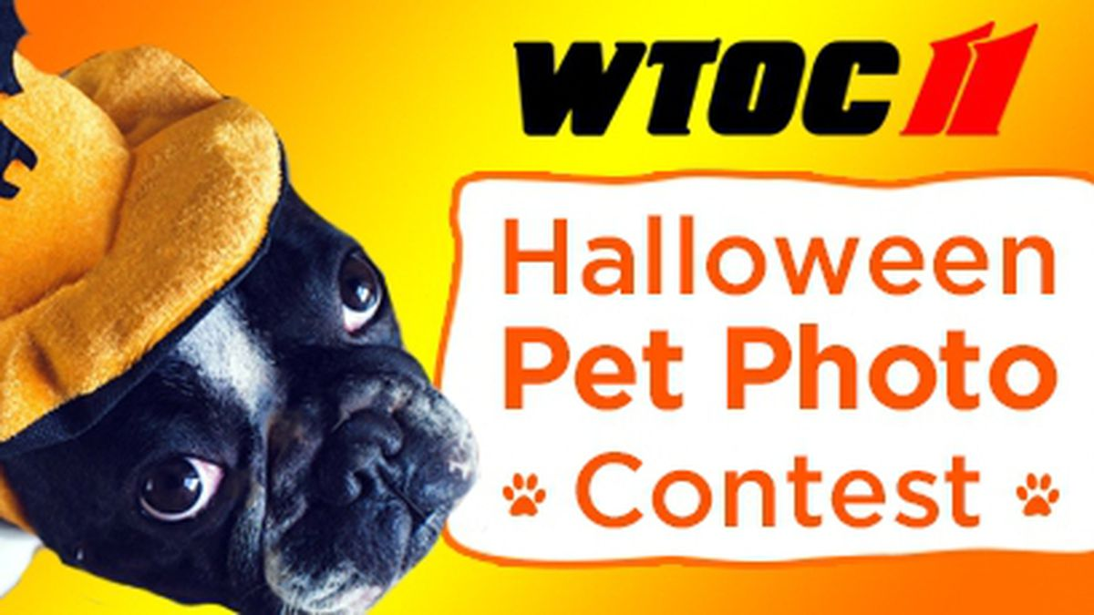 Halloween Pet Photo Contest by Central Animal Hospital