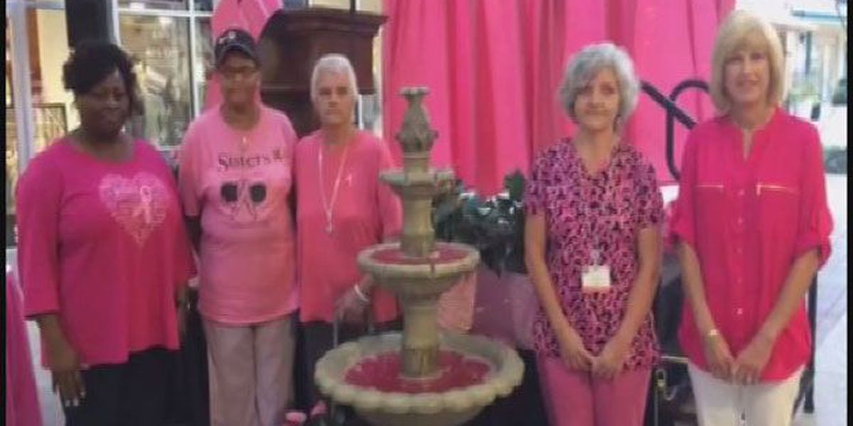 Pinking of the fountain at Tanger Outlets of Savannah