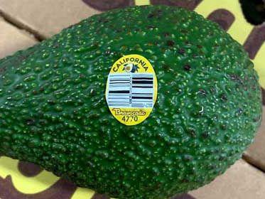California grower recalls avocados over possible listeria