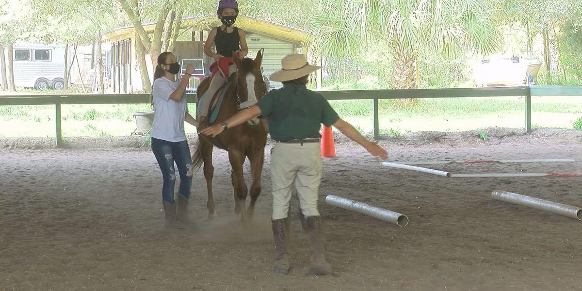 Community Champions: Pegasus Therapeutic Riding Academy