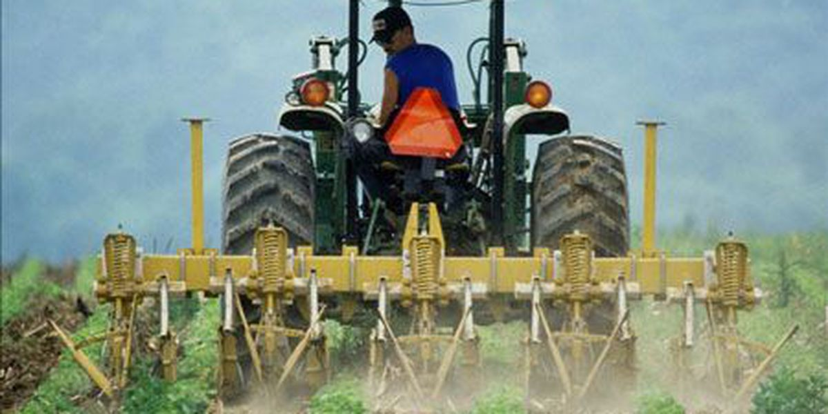 Ga. colleges to host agribusiness conference