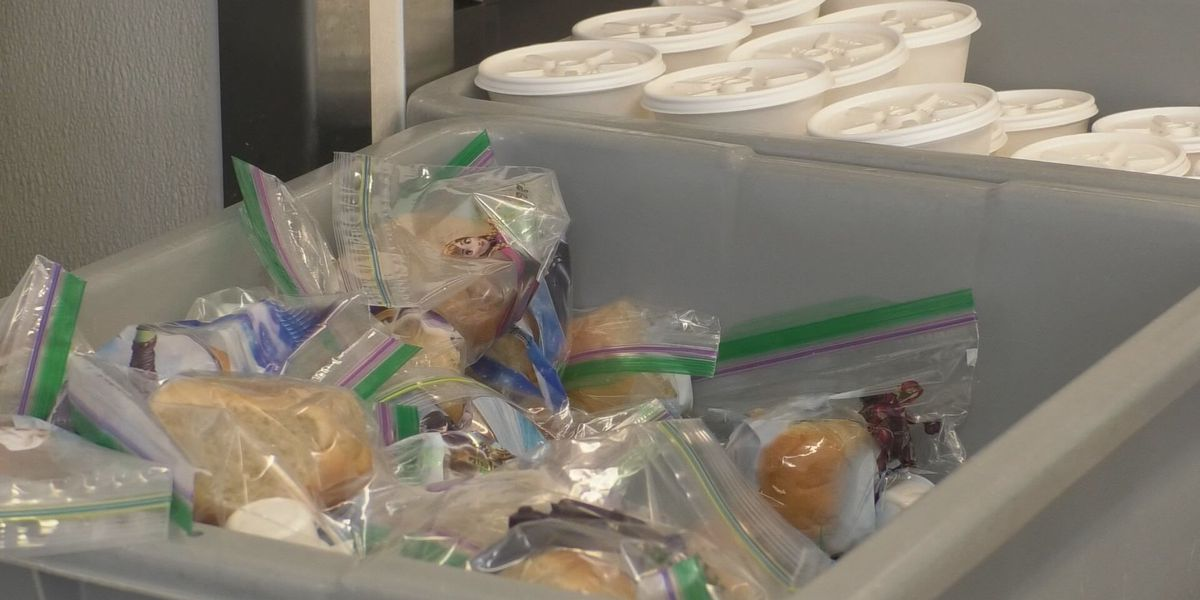 Second Harvest plans to help feed students during school year