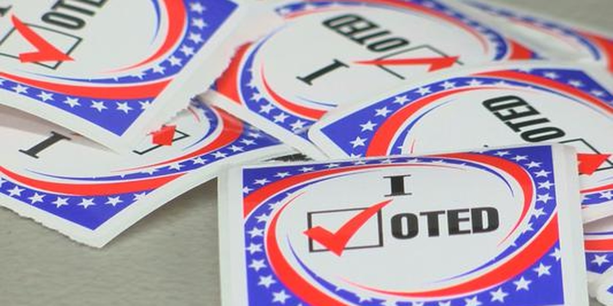 Savannah Mayor, District 6 Alderman to be decided in Tuesday's Runoff Election