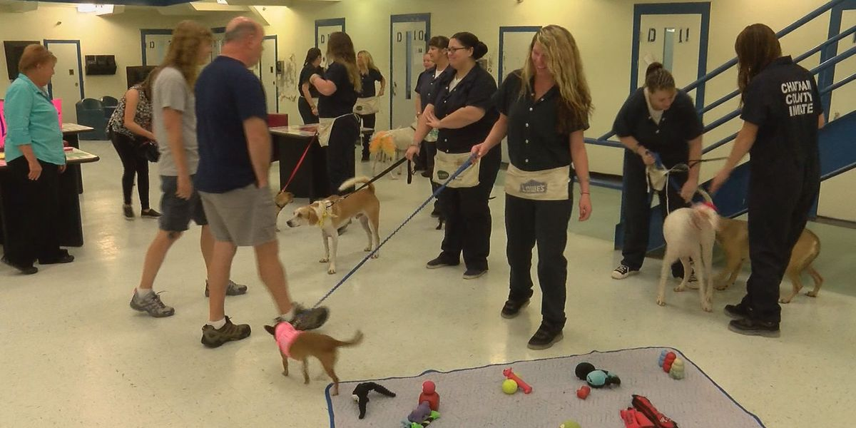Chatham Co. Sheriff's Office hosts 'Operation New Hope' open house