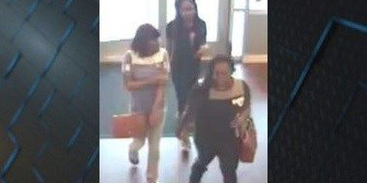BCSO looking for 3 women who stole over $1K worth from Tommy Hilfiger