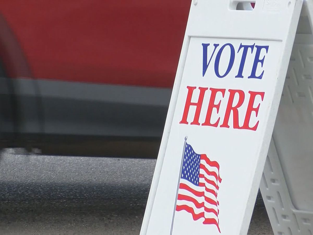 Lowcountry seeing high turnout for early in-person, absentee voting