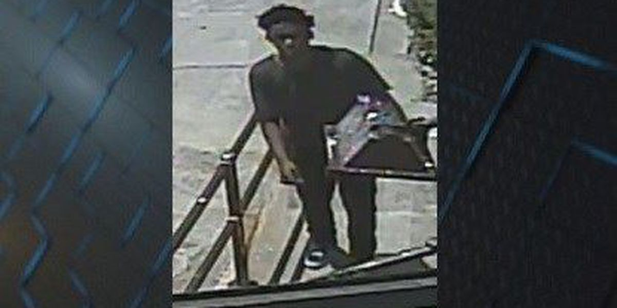 Savannah PD working to identify vehicle thief