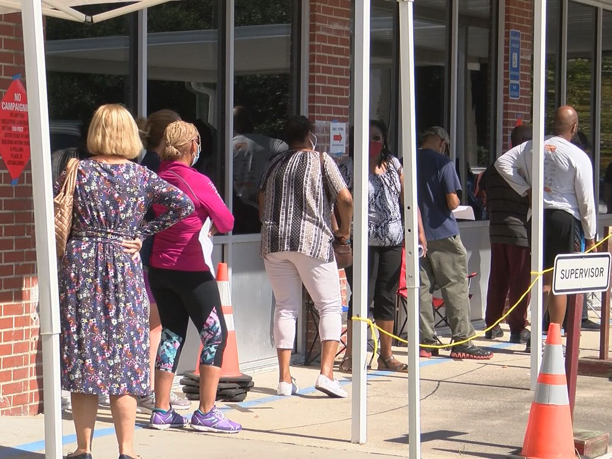 'Steady turnout' as Chatham County residents vote early on Saturday