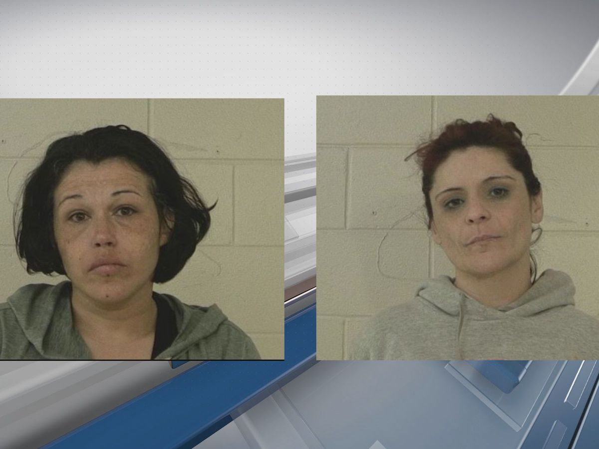 2 women arrested in Liberty Co. on drug charges