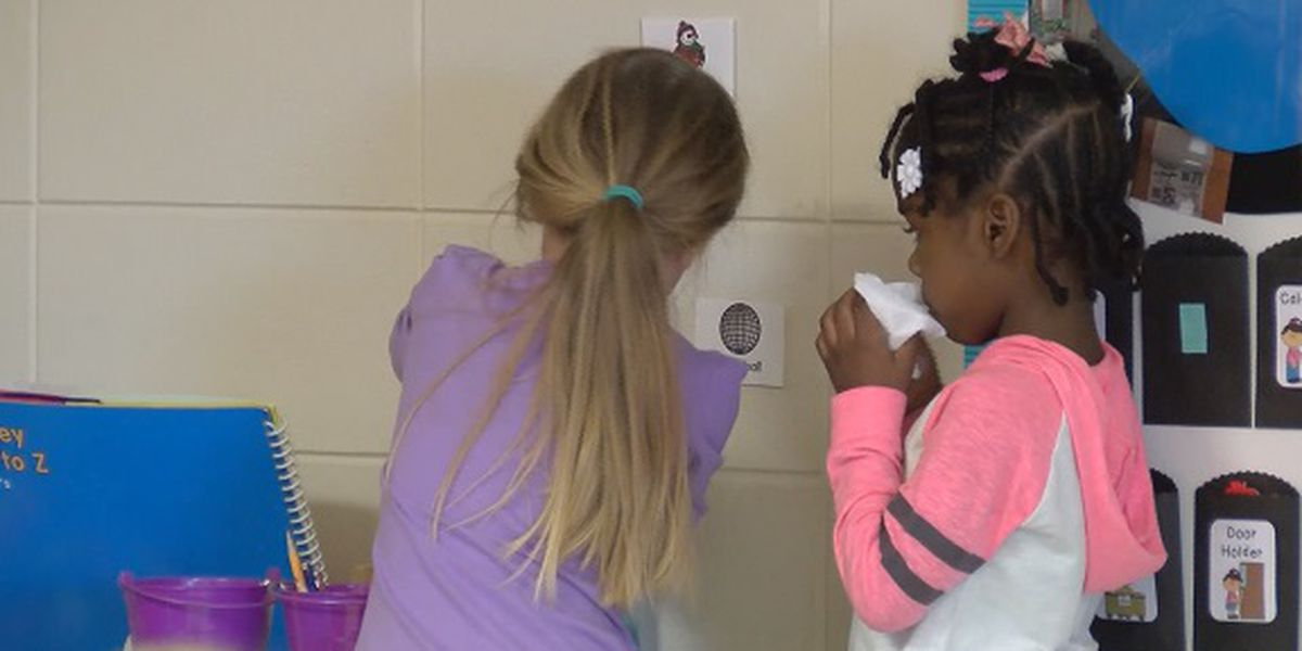 Over 200 students out sick as flu peaks in Screven County