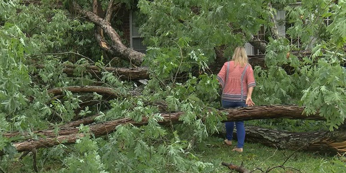 Garden City family thankful to be alive after tree falls through home