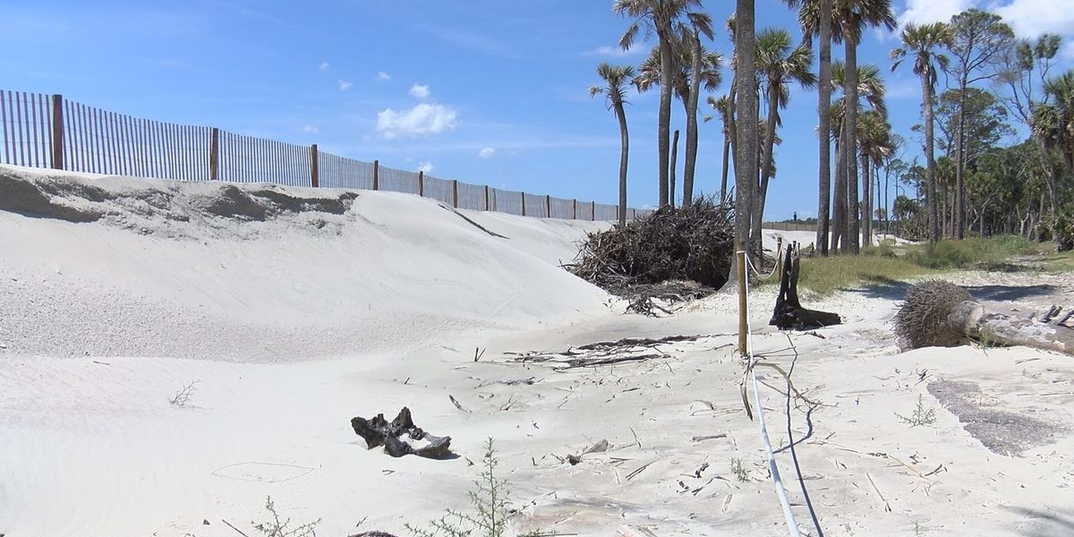 Hunting Island prepared for potential hurricanes