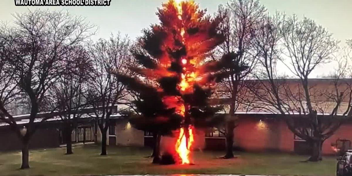 CAUGHT ON CAMERA: Lightning obliterates tree outside high school in Wis.