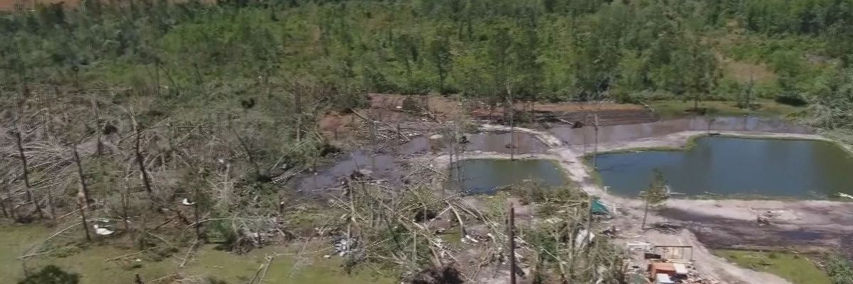 Hampton Co. community still recovering one year after deadly tornado