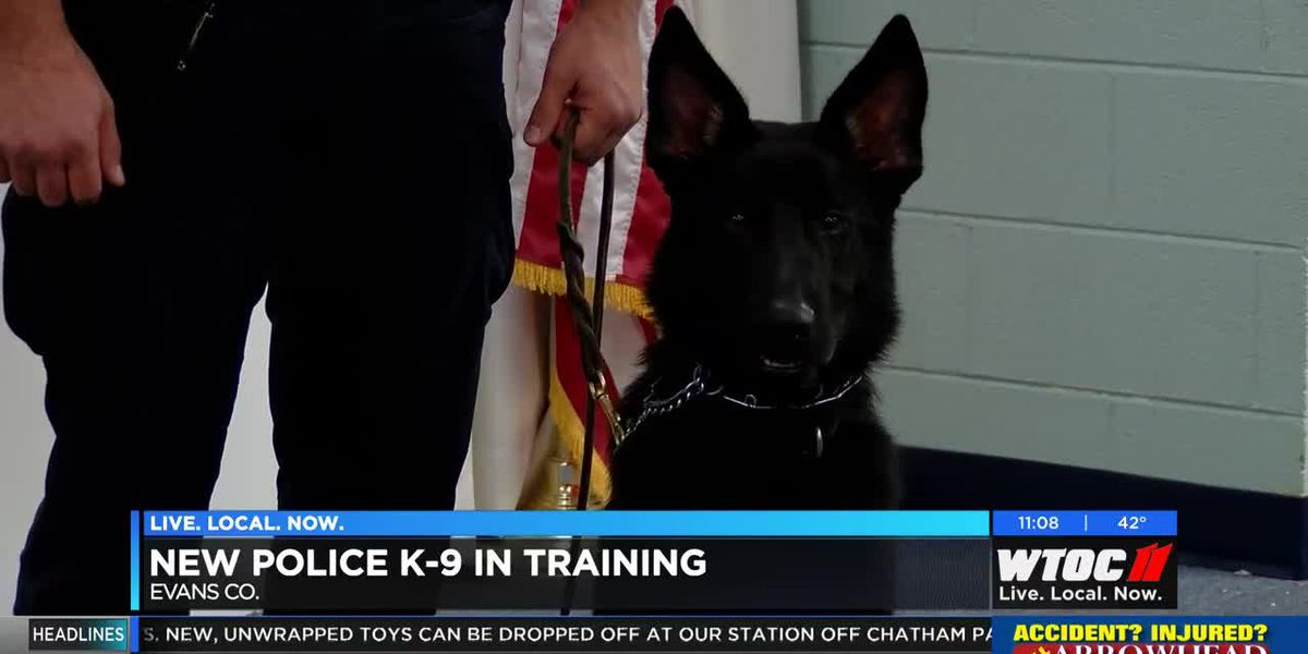 Evans County Sheriff's Office adds first ever K9 to department