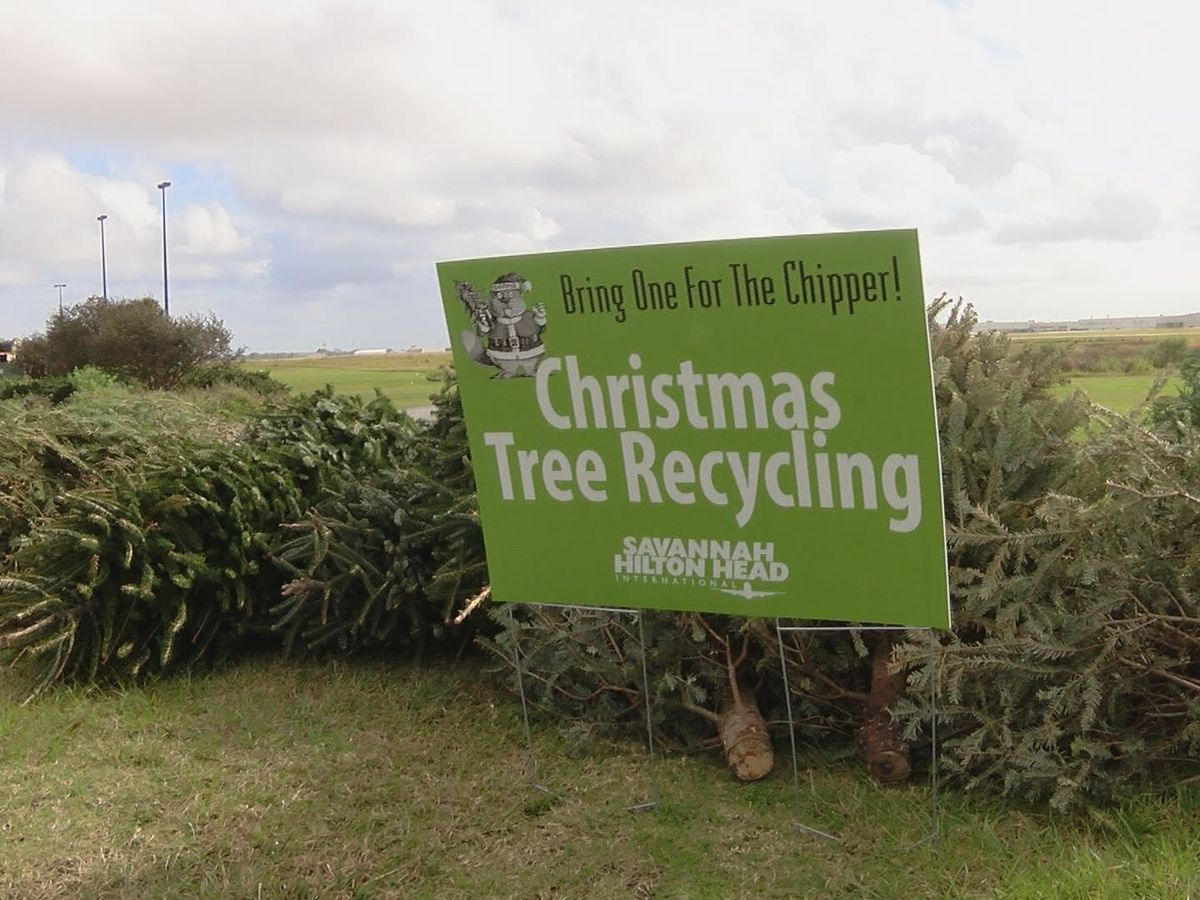 Residents encouraged to recycle old Christmas trees