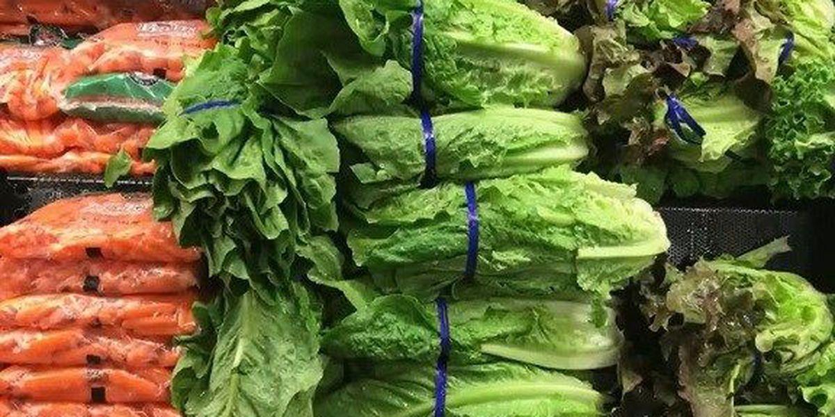 E. coli scare from Romaine lettuce hits 22 states so far