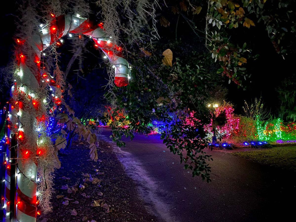 Coastal Ga. Botanical Gardens hosting Holiday Lights as drive-thru event