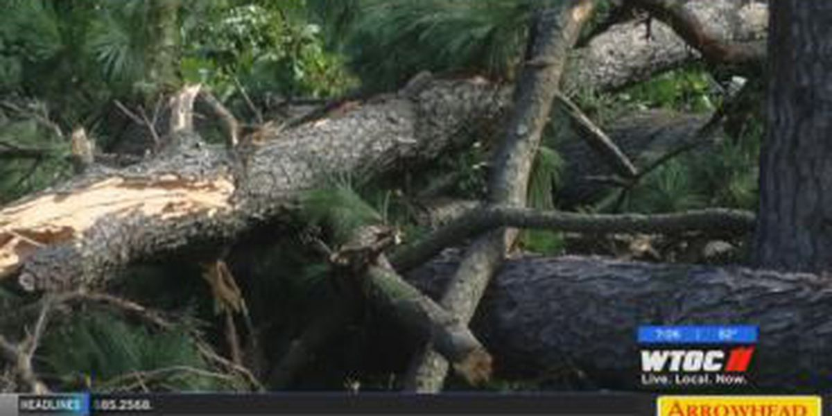 Whitemarsh Island residents cleaning up after Friday's tornado