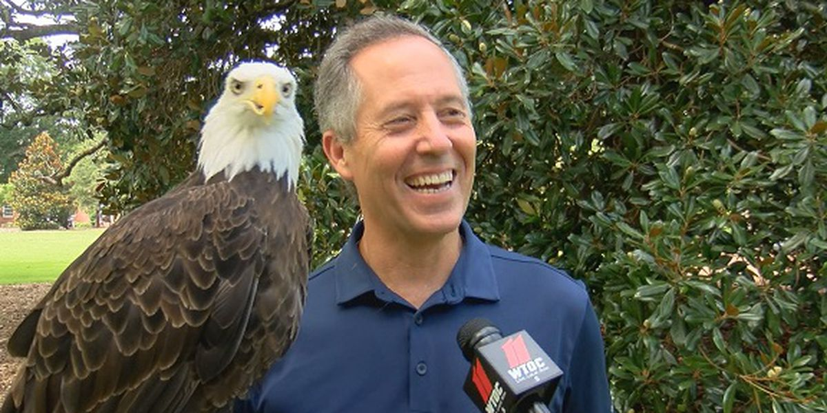 Georgia Southern's 'Freedom' is more than a mascot