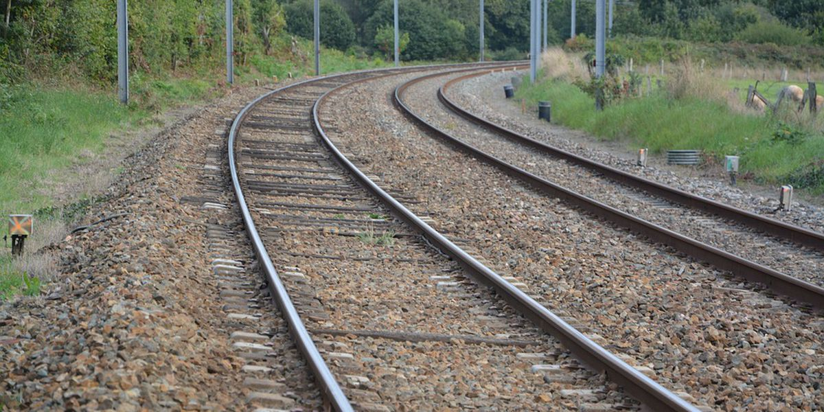 Trains would fly through Georgia, Carolinas at up to 220 mph