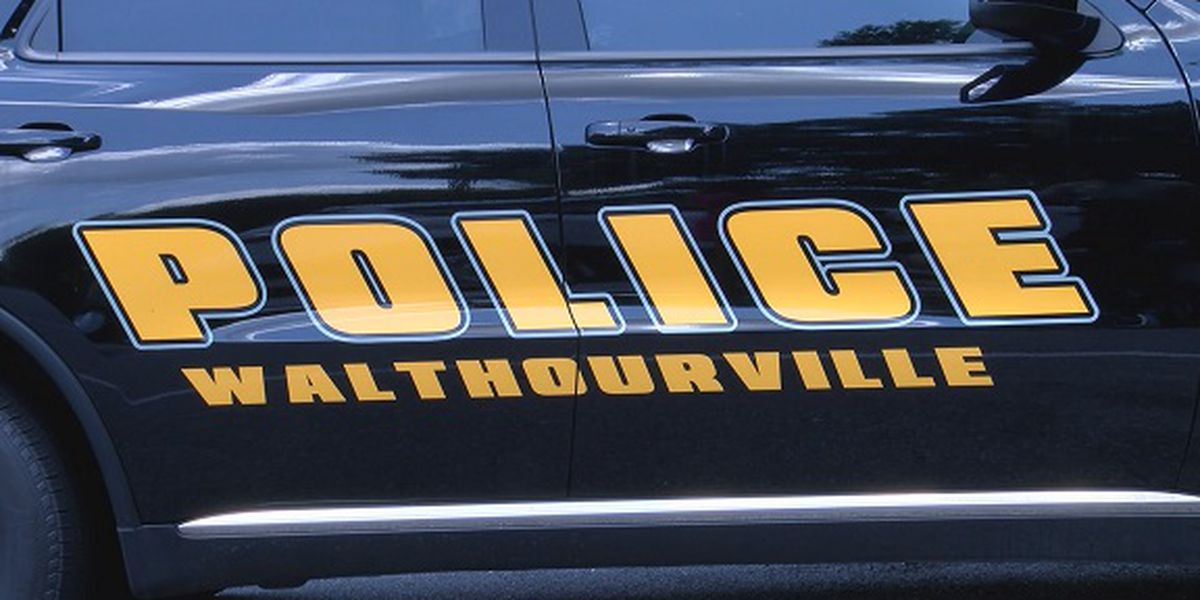 Walthourville introduces program focused on protecting senior citizens