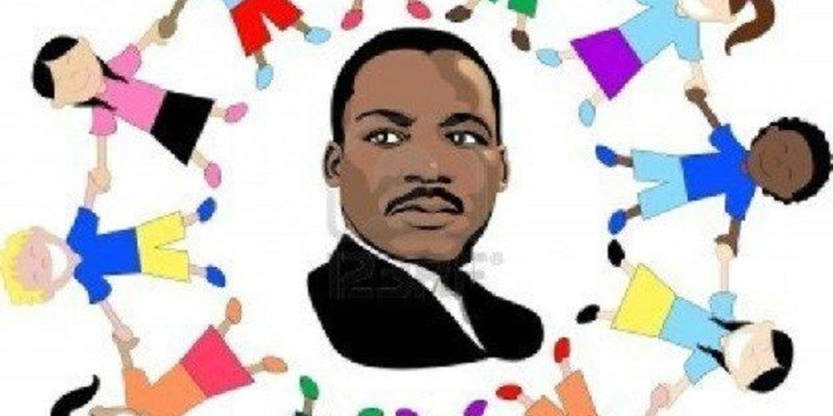 3rd annual Tybee MLK, parade and human rights celebration