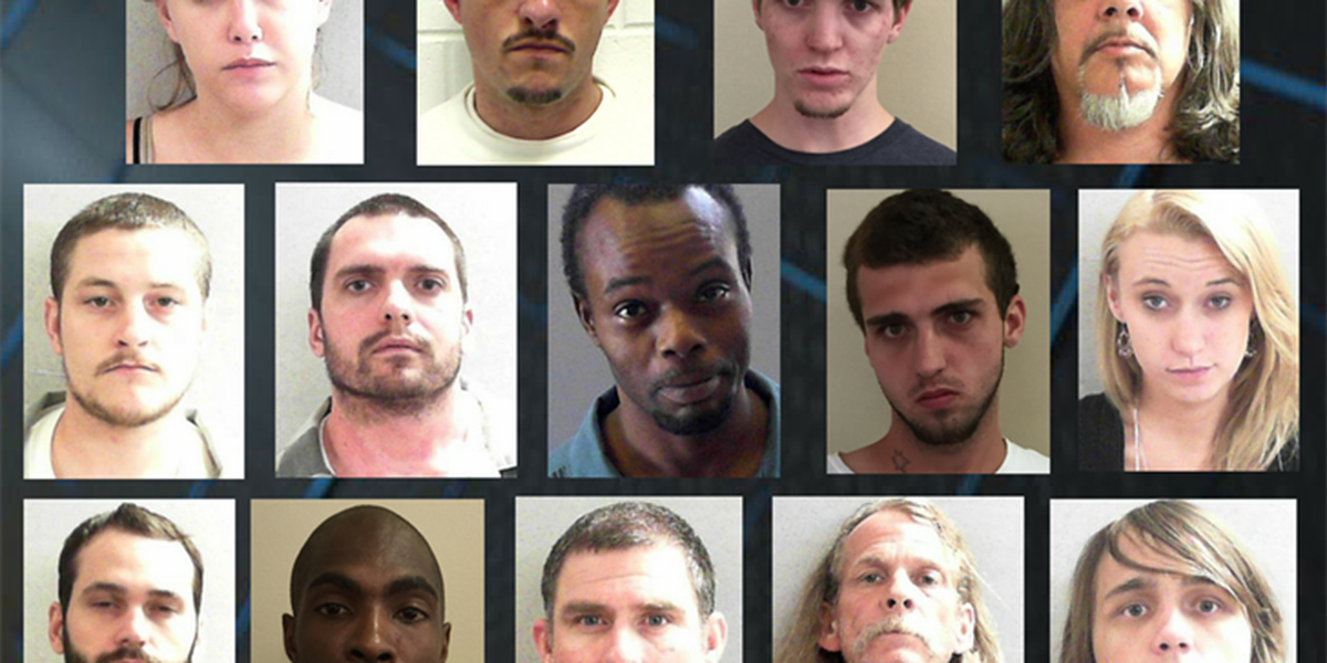 14 south Georgia residents indicted on federal drug trafficking charges