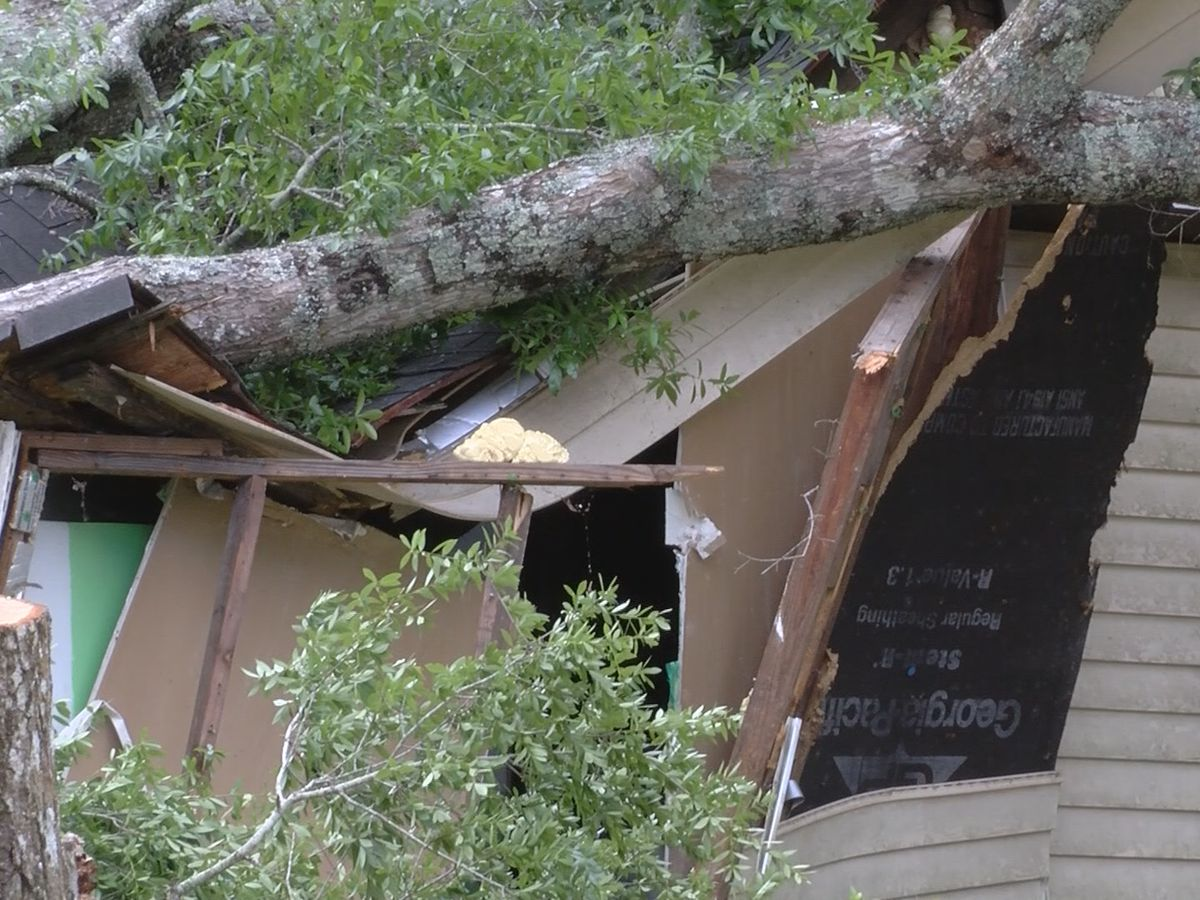 Wayne County residents clean up after storm
