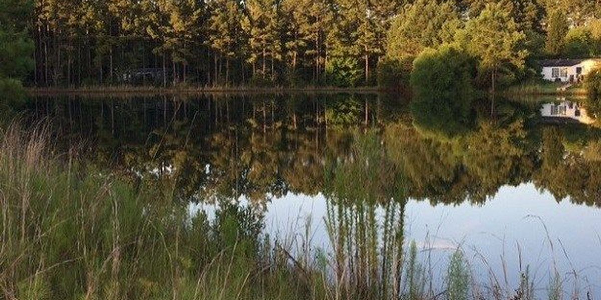 Man drowns in pond near Sage Point Drive in Effingham Co.