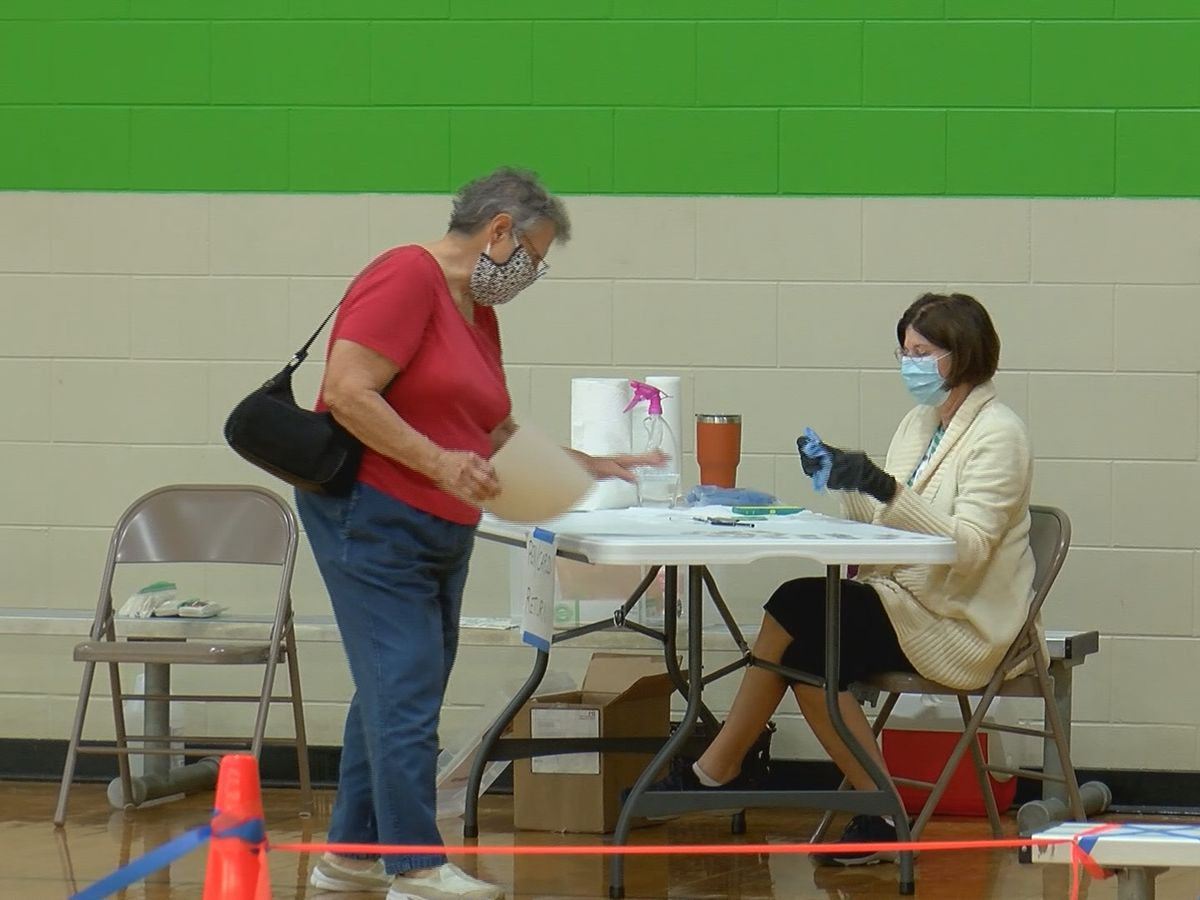 Bryan County reports record turnout for early voters