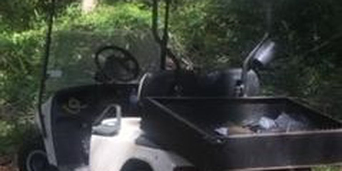 BCSO looking for golf cart stolen from Indigo Plantation on HHI