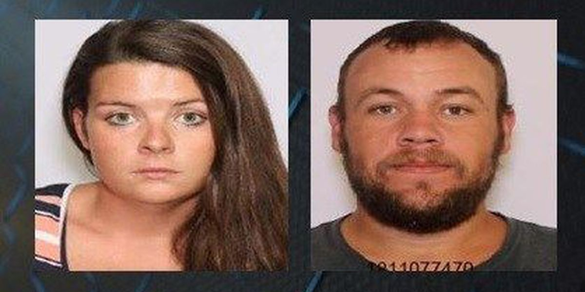 Lowcountry officials arrest man, woman for grand larceny