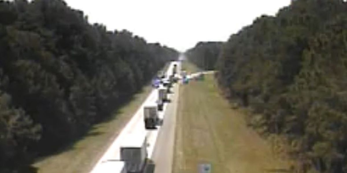 Deputies: Robbery suspect dies after high-speed chase, crash on I-95 in Colleton Co.
