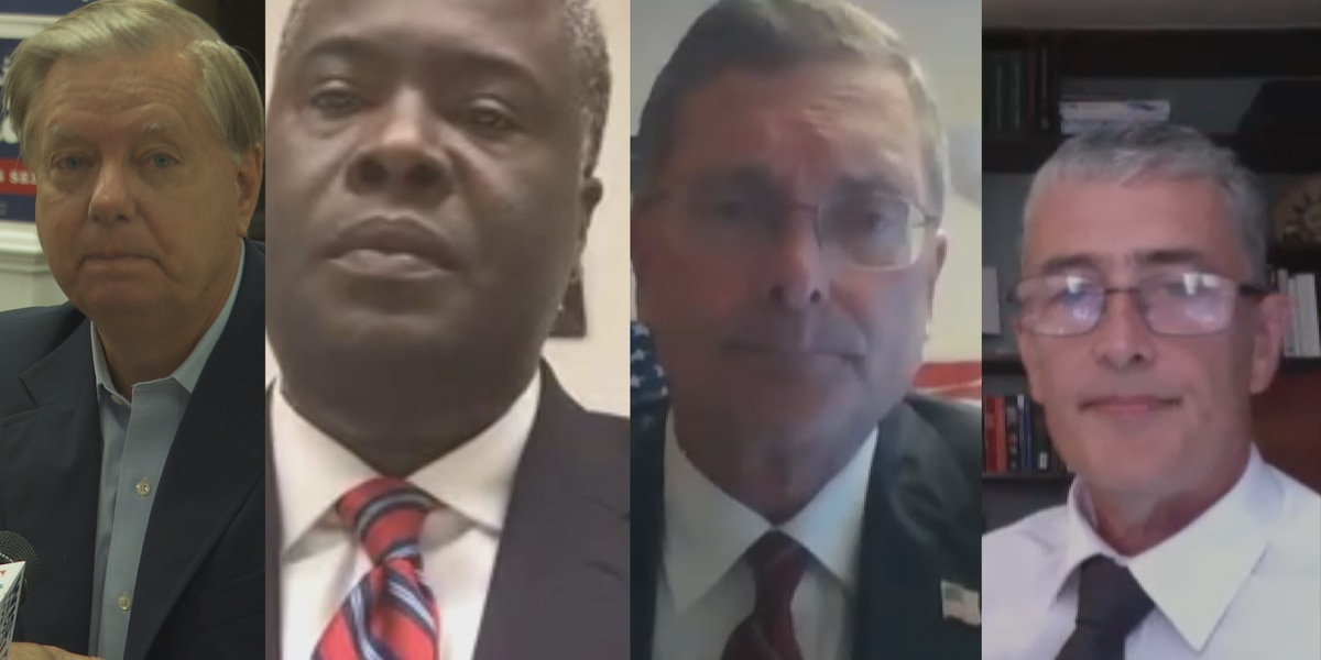 Meet the SC candidates vying for the GOP US Senate nomination