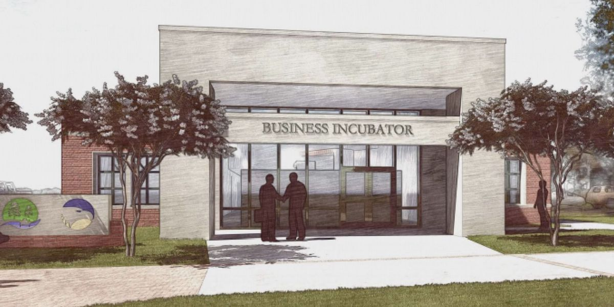 Hinesville to partner with Georgia Southern University to open small business incubator