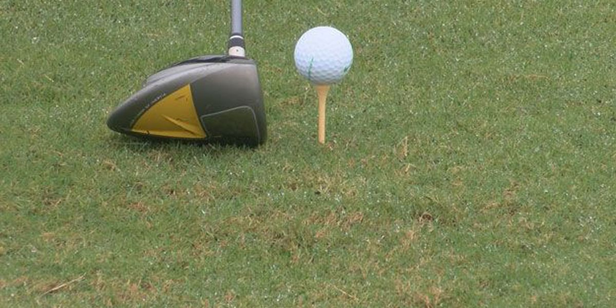 More than $80,000 raised in Parker's annual golf tournament