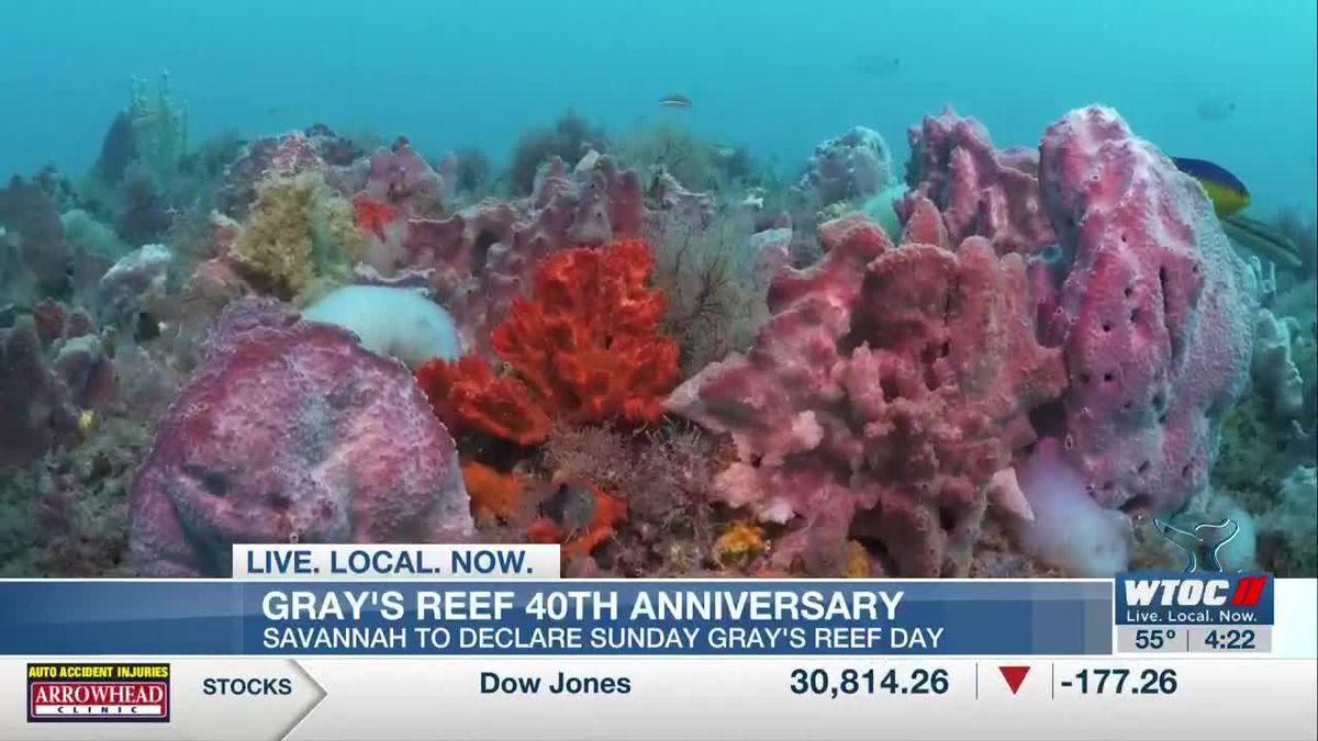 Gray's Reef to celebrate 40th anniversary