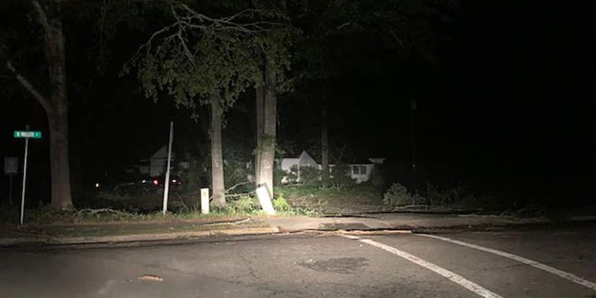Walterboro residents face power outages, blocked roads a day after storms