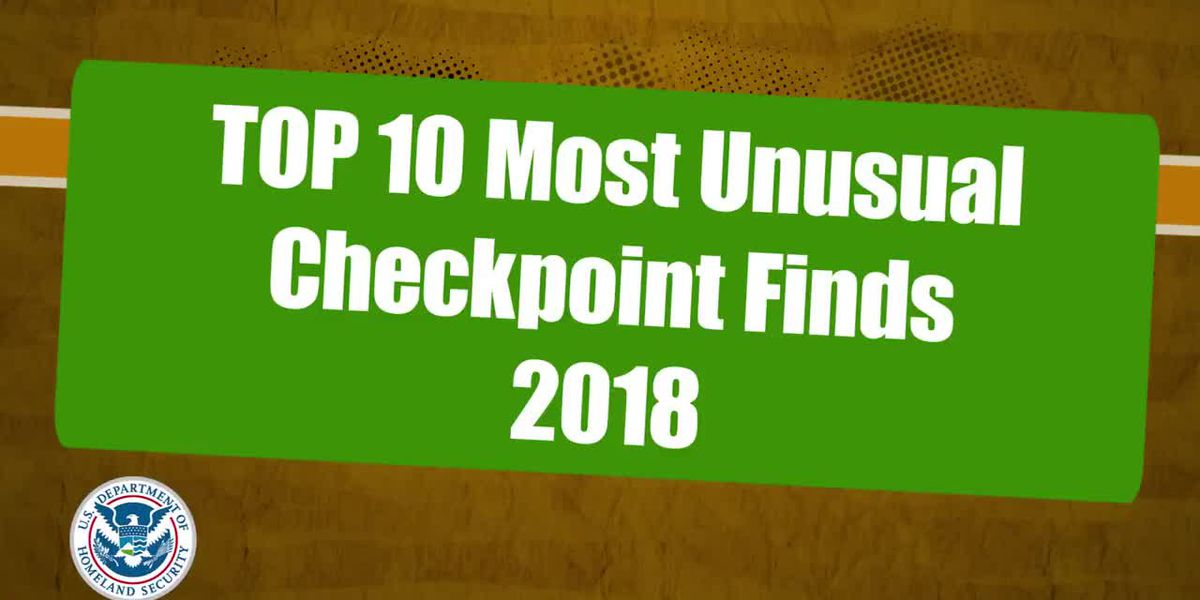 TSA's Top 10 checkpoint finds of 2018: From a snake to Freddy K