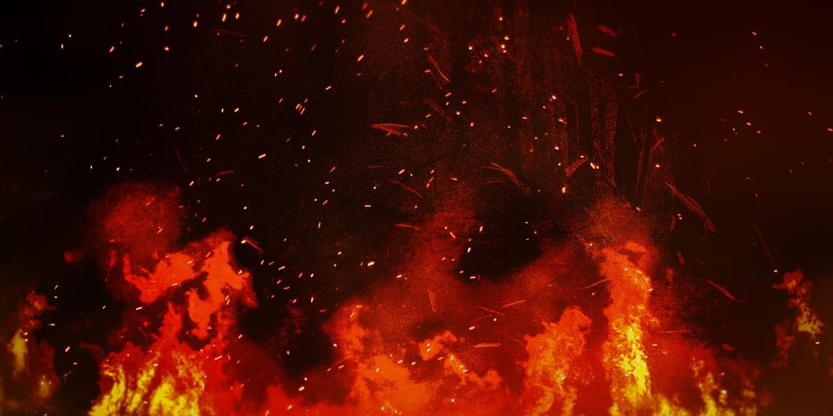 Mother, son killed in overnight Statesboro fire