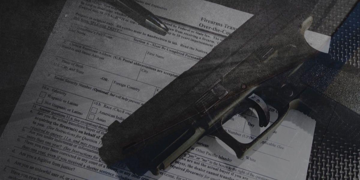Ga. & S.C. saw increase in gun sales in 2020