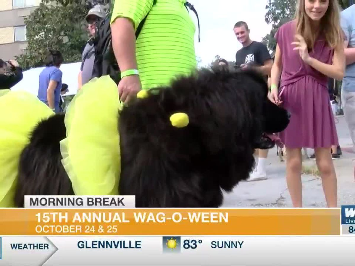 Wag-O-Ween Will Look Different This Year