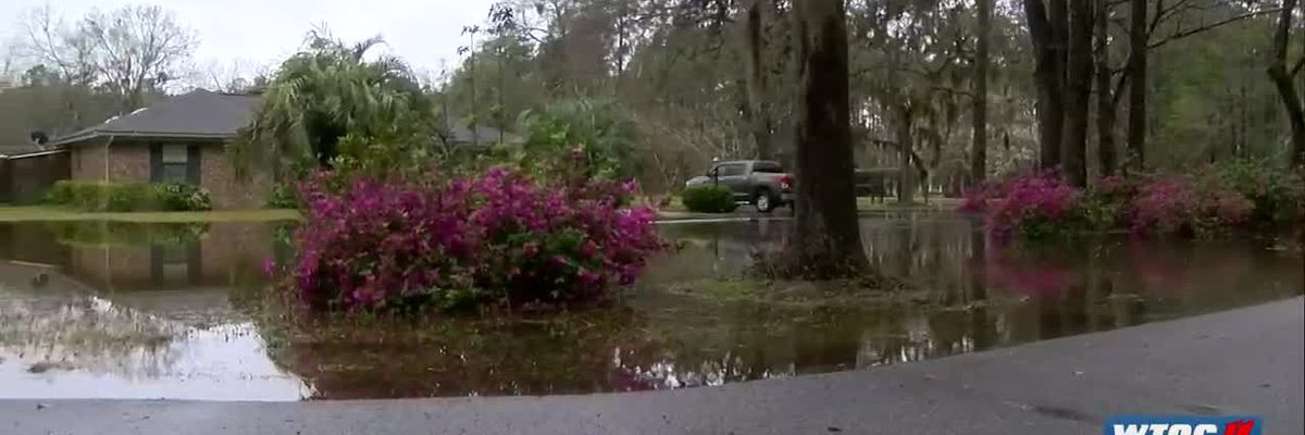 Parts of Richmond Hill seeing flooded yards from rain