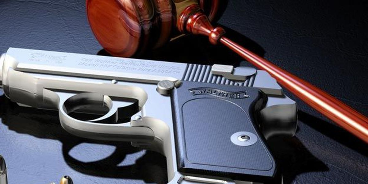 NEW AT 11: Reactions to new GA gun law