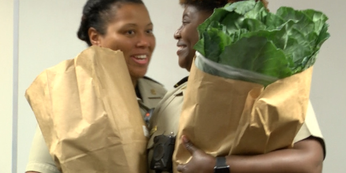 Chatham Co. Sheriff's deputies donate Thanksgiving meals
